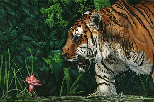Tiger Lily by Wayne Pruse