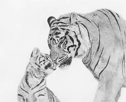 Tiger Love by Sandra Weiner