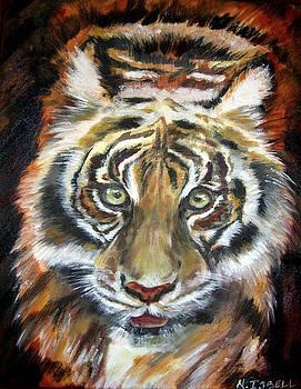Tiger by Nancy Isbell