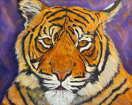 Purple and Gold, Tiger by Sandra Cutrer