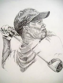 Tiger by Otis  Cobb