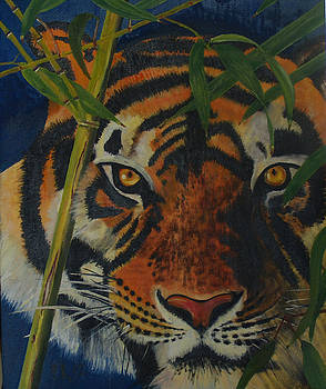 Tiger by Pedro Riera