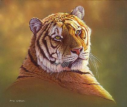 Tiger Portrait in oils by Eric Wilson