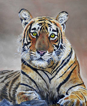 Tiger portrait by John Neeve