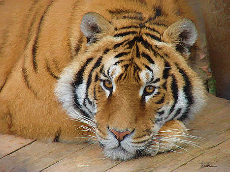 Tiger Resting - Painting by Ericamaxine Price