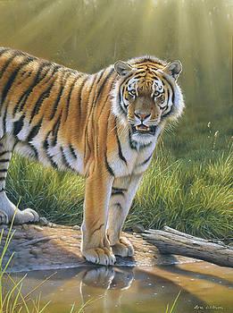 Tiger Royal Chitwan Nepal. by Eric Wilson