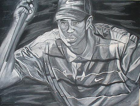 David Courson - Tiger Woods