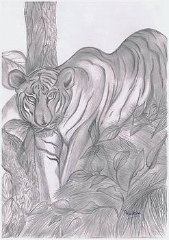 Xafira Mendonsa - Tiger