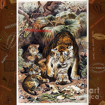 Tigers for Responsible Tourism by Nola Lee Kelsey