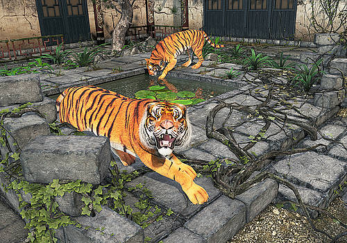 Tigers in the Courtyard by Peter J Sucy