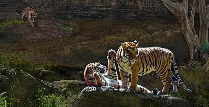 Tigers In The Night by Thanh Thuy Nguyen