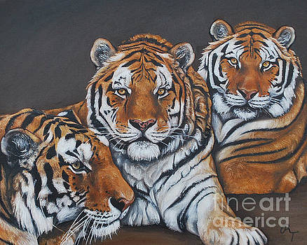 Tigers by Rebecca Tiano