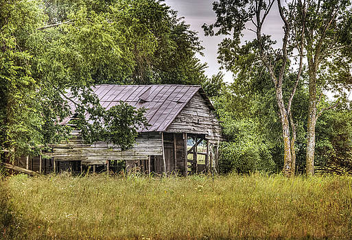 Tigertown Barn by Lisa Moore