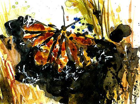TijgerVlinder Day08/30 by Garima Srivastava