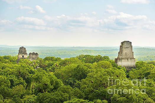Tim Hester - Tikal National Park Guatemala