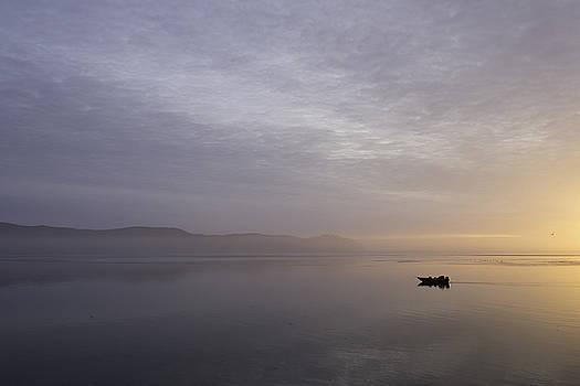 Tillamook River Sunset by Wendy Chapman