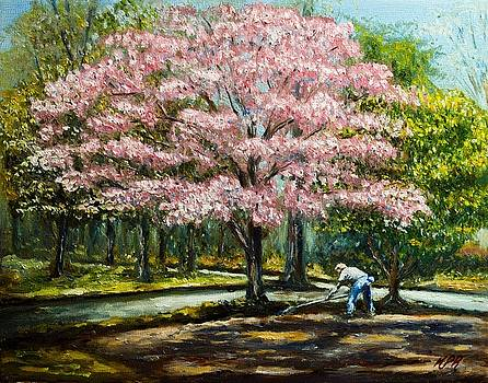 Tilling Under a Dogwood by Kevin Richard