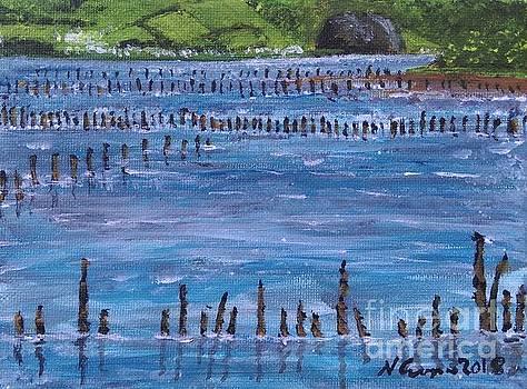Timber Ponds Port Glasgow by Neal Crossan