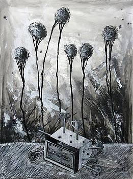 Time Machine by Lorenzo Muriedas