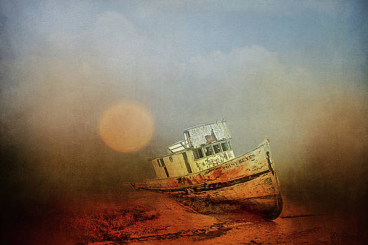 Timeless Dreams by Theresa Campbell