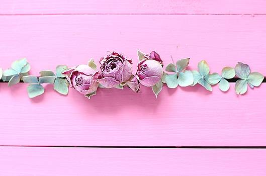 Timeless Flowers all in a Row by Emma Manners