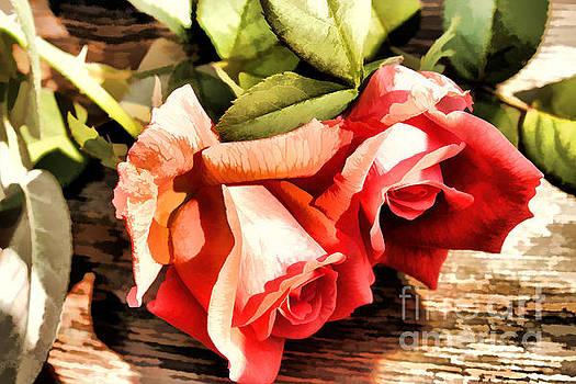 Timeless Tropicana Roses by Judy Palkimas