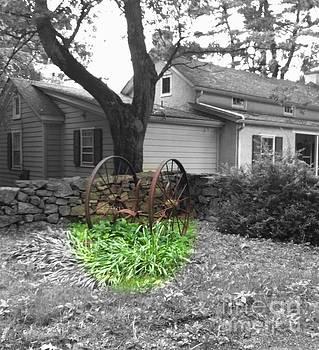 Timeless Wheel House by Vicki Lynn Sodora