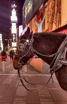 Times Square Horse by Bruce Lennon