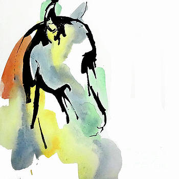 Tinted Horse Head 1 by Chris Paschke
