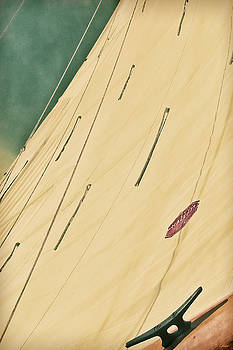 Green Tinted Horizon Sail Portrait by Tony Grider