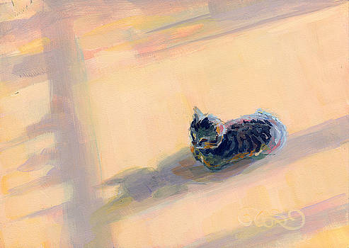 Kimberly Santini - Tiny Kitten Big Dreams