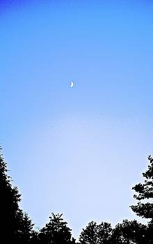 Tiny Moon 4 by Katy Granger