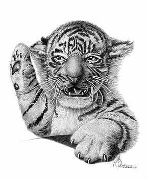 Tiny the Tiger by Murphy Elliott