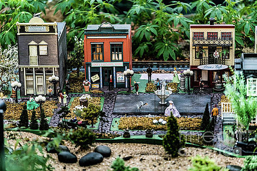 Tiny Town by Debbie Nobile