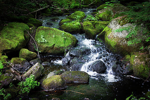 Tiny Waterfall - Ellsworth Maine by Kirkodd Photography Of New England