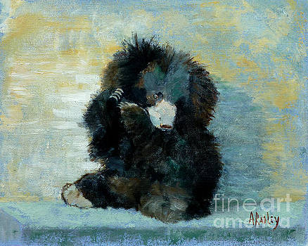 Titli Bear by Ann Radley