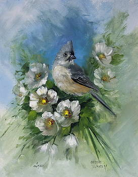 David Jansen - Titmouse and Blossoms