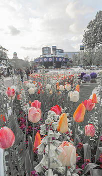 Tivoli Gardens Bring Out Your Reds Oranges Purples by Betsy Knapp