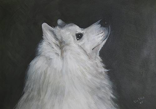 To Live With a White Dog by Elizabeth Ellis