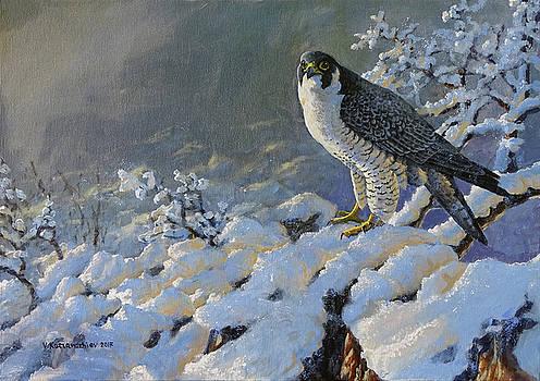 To Survive the Winter by Valentin Katrandzhiev