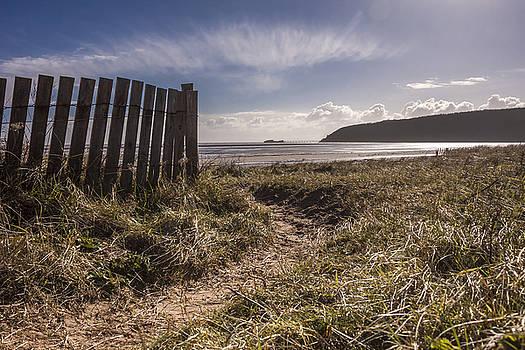 Stewart Scott - To the beach
