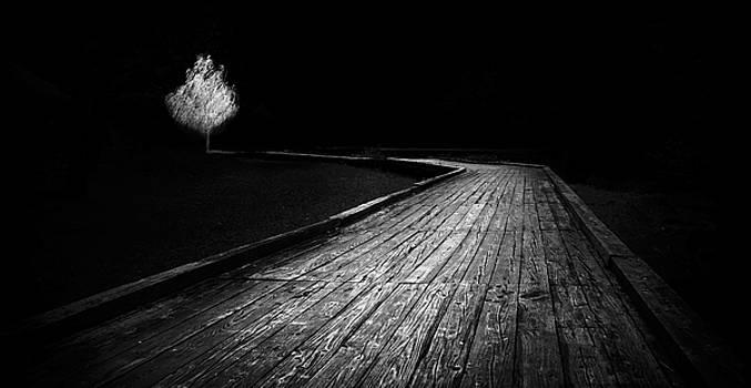 Destiny   by Ahmed Shanab