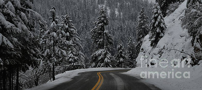 To The Mountains by Greg Patzer