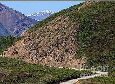 To the Mountains by Robert Pilkington