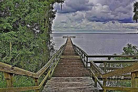 Paula Porterfield-Izzo - A Walk To The Sea