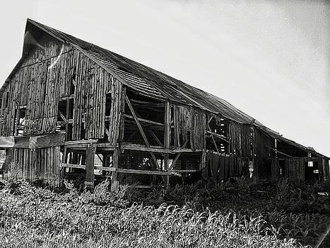 Tobacco barn 1 by Dustin Soph