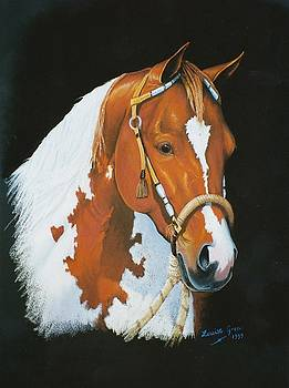 Tobiano by Louise Green