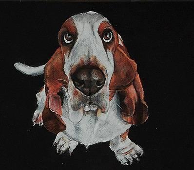 Toby Was All Ears by Jean Cormier