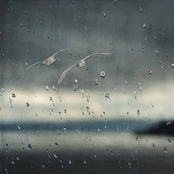 Together in the Rain by Sally Banfill