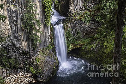 Tim Moore - Toketee Falls